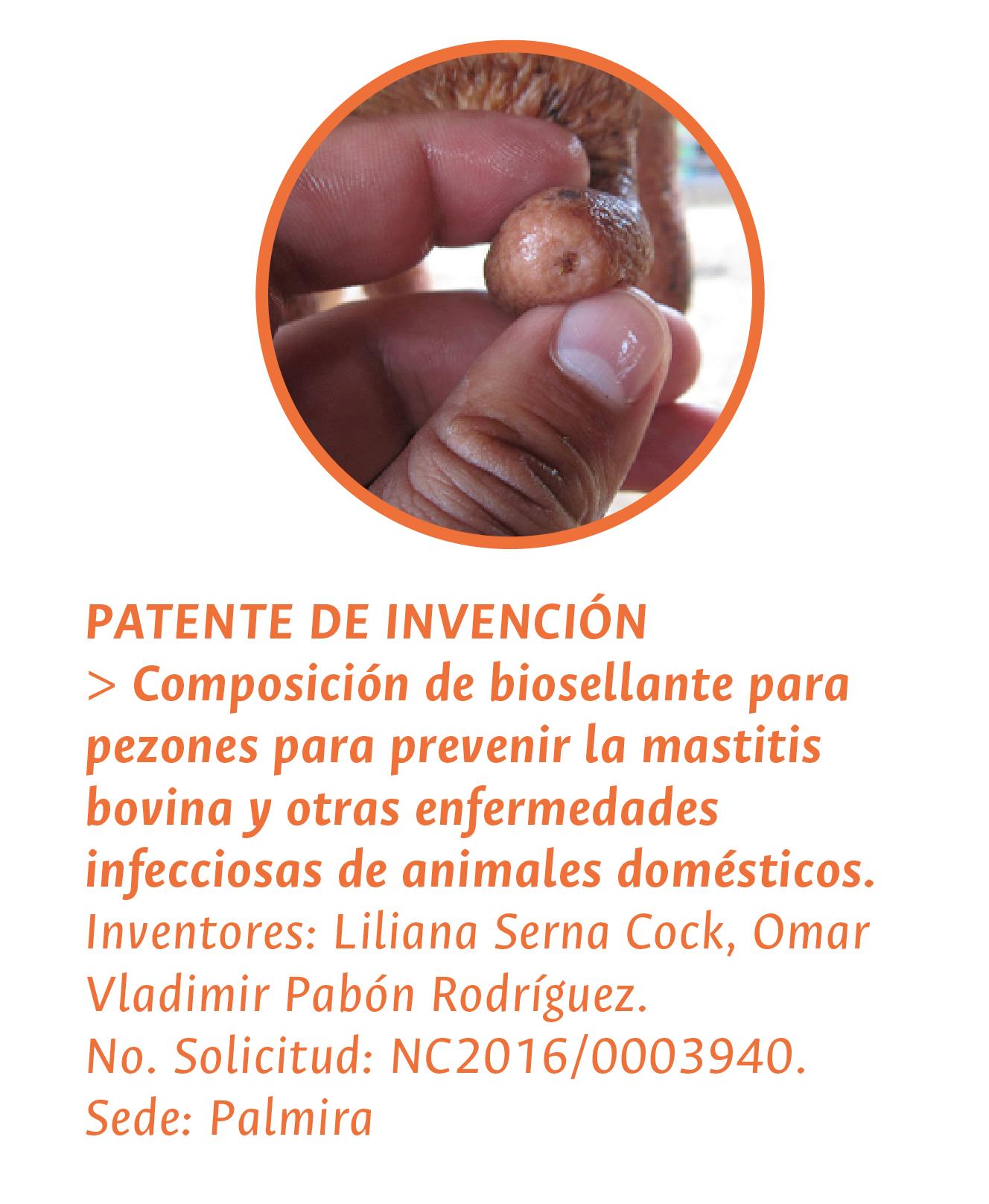 PATENTE DE INVENCIÓN > «Composición de biosellante para pezones para prevenir la mastitis bovina y otras enfermedades infecciosas de animales domésticos». Inventores: Liliana Serna Cock, Omar Vladimir Pabón Rodríguez. No. Solicitud: NC2016/0003940. Palmira
